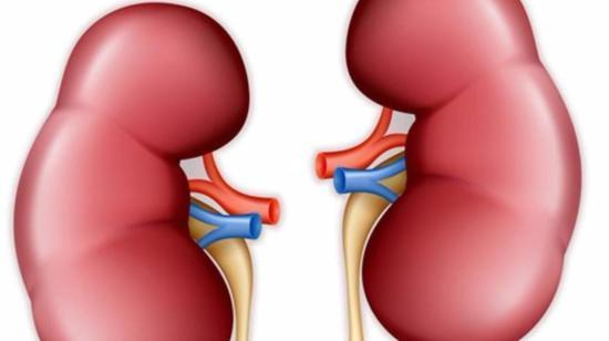 Q&a About Kidney Failure, Dialysis and Transplantation