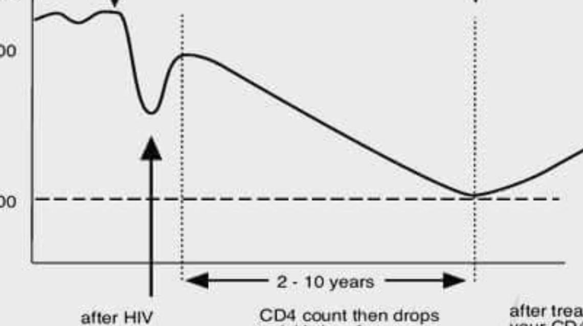 Effect of Hiv on Cd4 Counts