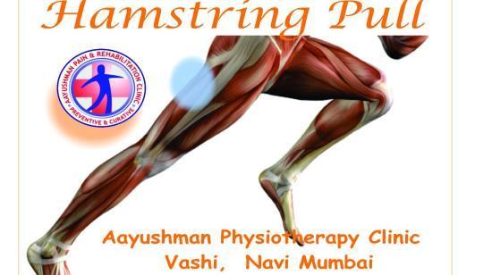 Hamstring Pull / Strain