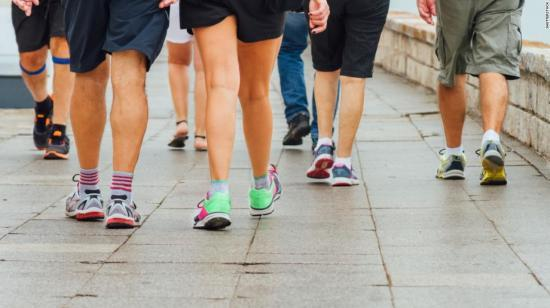 How to Plan Your Daily Walks