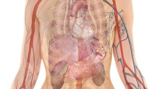 Tips to Avoid Liver Disorder!!