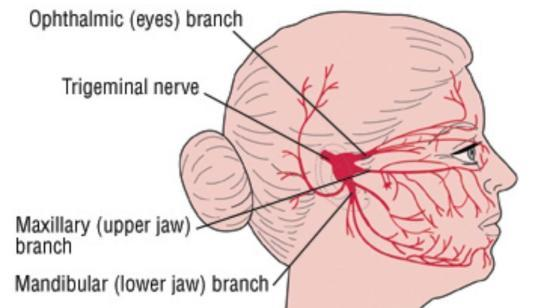 Neuralgia: Types and Treatment Options