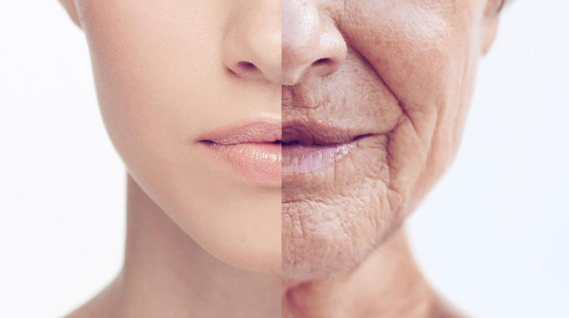 7 Major Reasons for the Aging