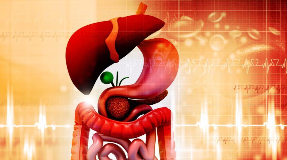 Stomach and Pancreatic Cancer