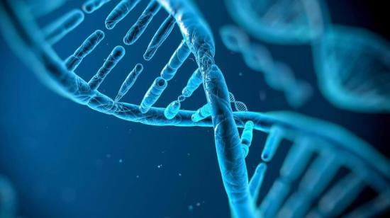 Genetic Counseling-  An Integrative Approach