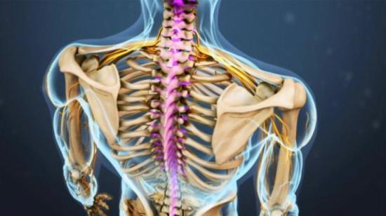 Keep Your Spine Safe---Spinal Cord Injury Has Lot Many Complications