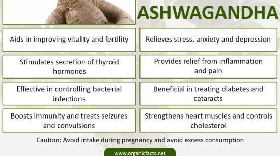 Health Benifits of Aswgandha Meditional Plant