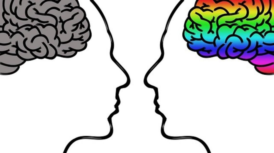 Understanding the Brain Ailments