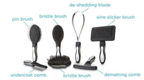 Grooming tools for your Dog