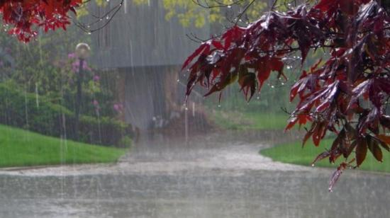 Diet in Rainy Season (Varsha Ritucharya)