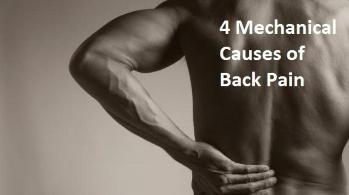 4 Mechanical Causes of Back Pain