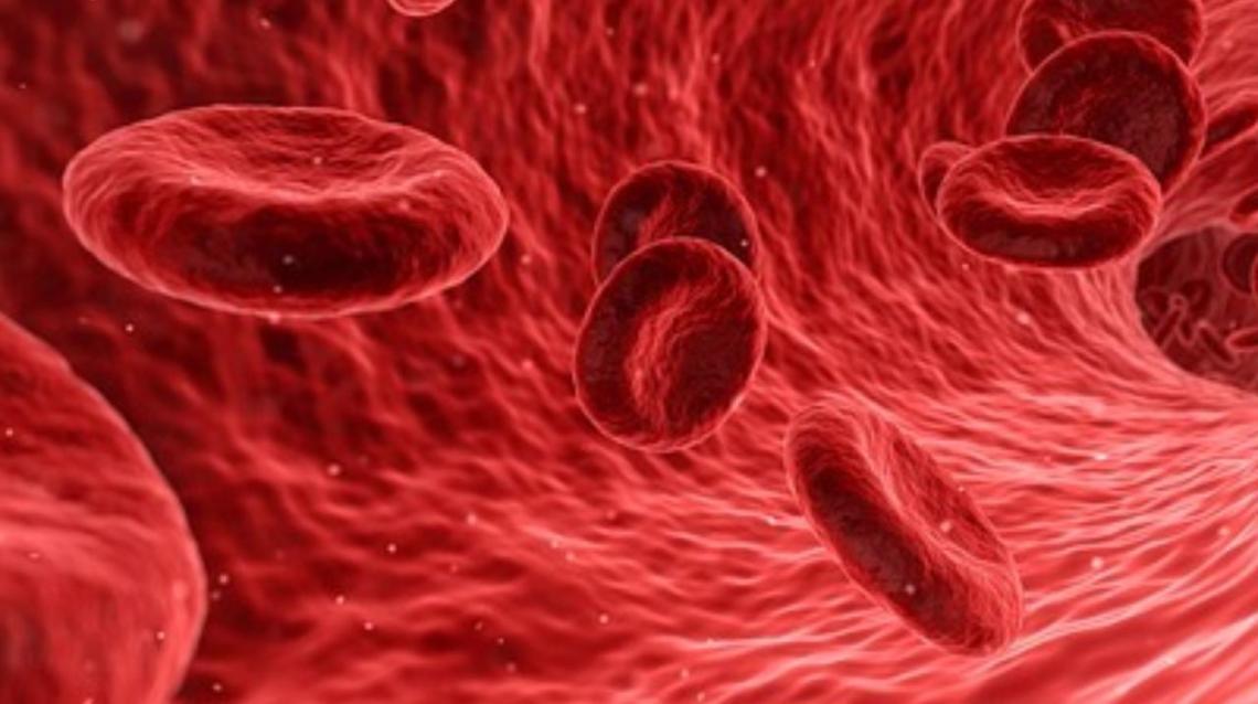 Curing Anemia Through Organic Diet