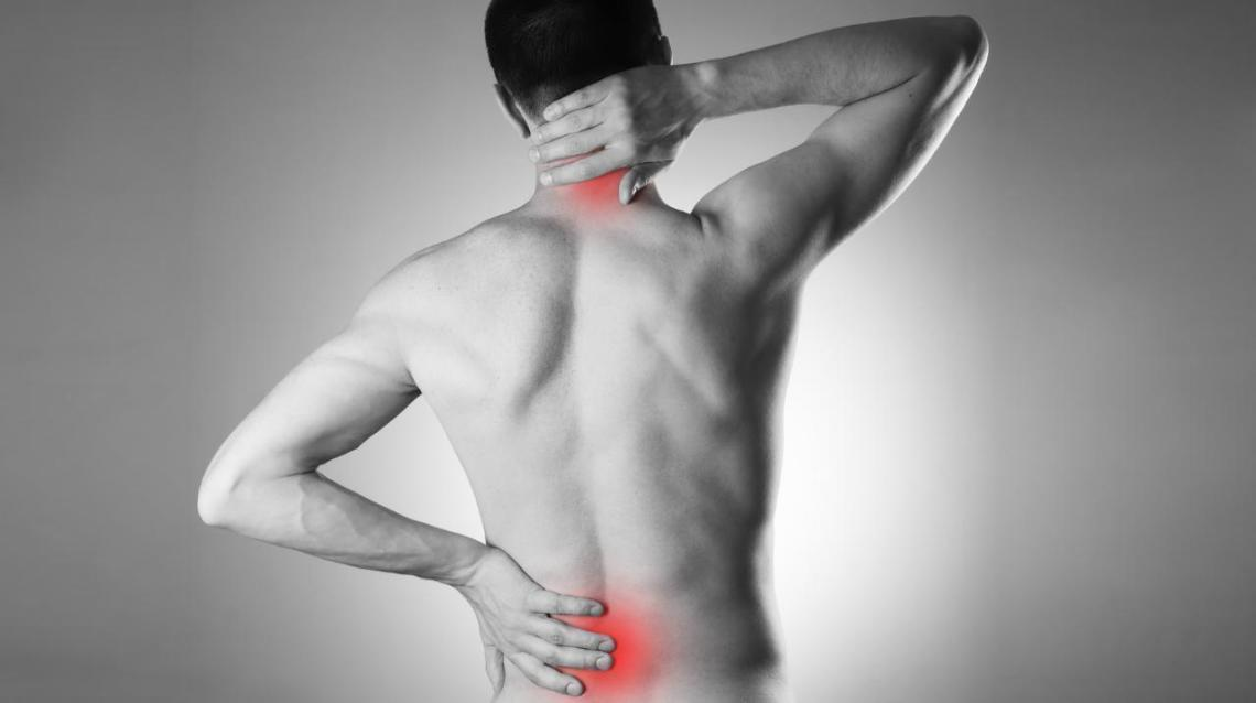 Do You Know These Things About Your Spine ?