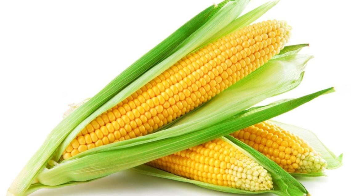 Corn: A Dieter's Dream Weight-Loss Food