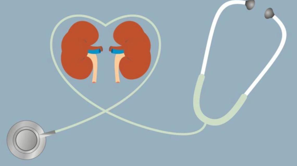 Excess Phosphorous Causes Chronic Kidney Diseases
