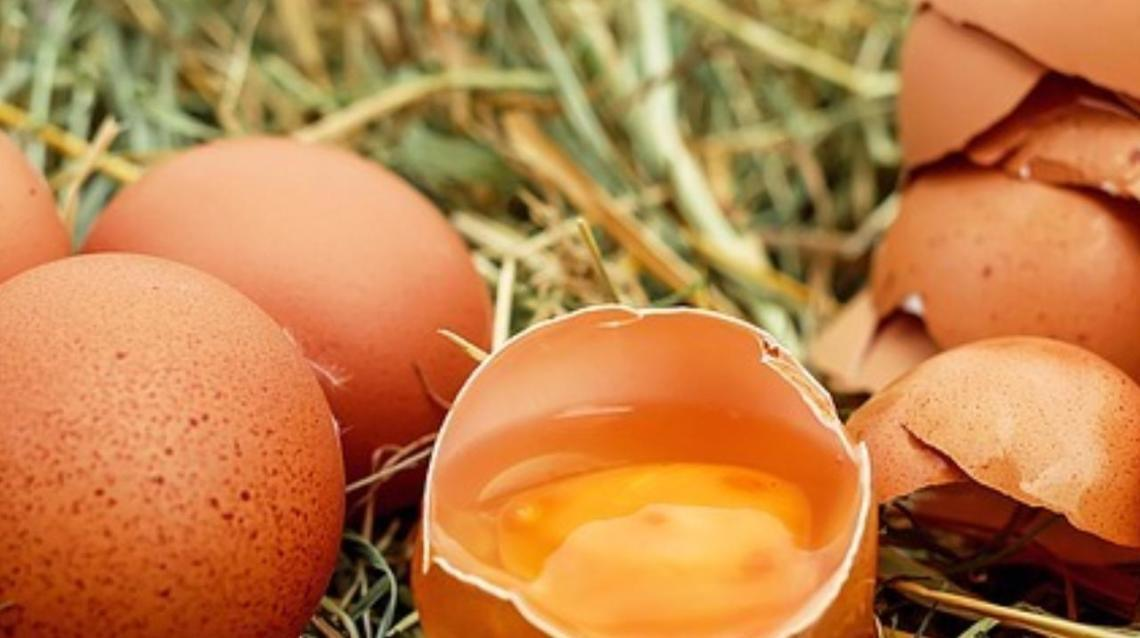 How Many Eggs Can You Consume in a Day?
