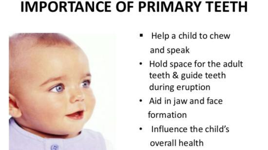Primary & Permenant Teeth Eruption Chart