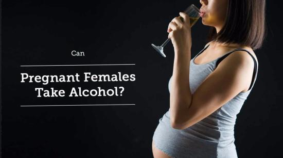Can Pregnant Females Take Alcohol?