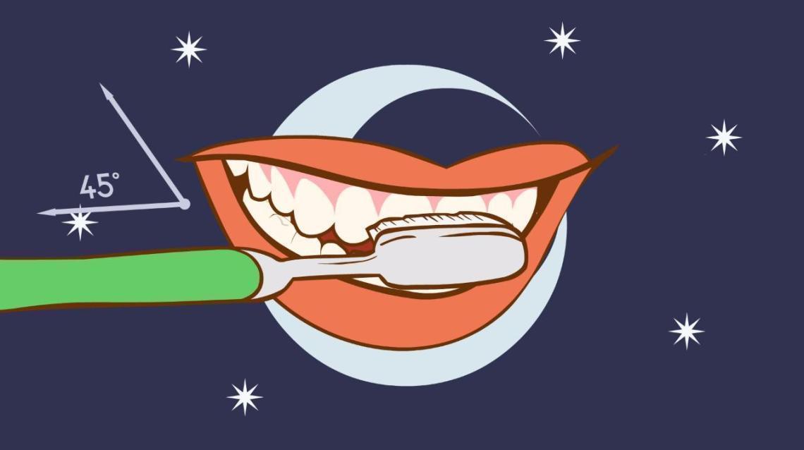 How Do I Brush and Floss My Teeth?