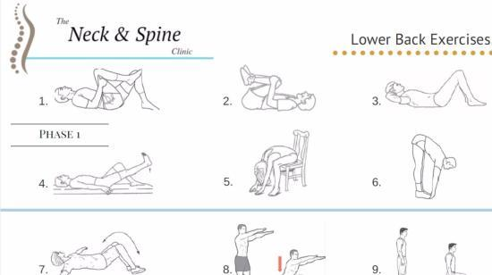 6 Daily Exercises for Strengthening Your Back