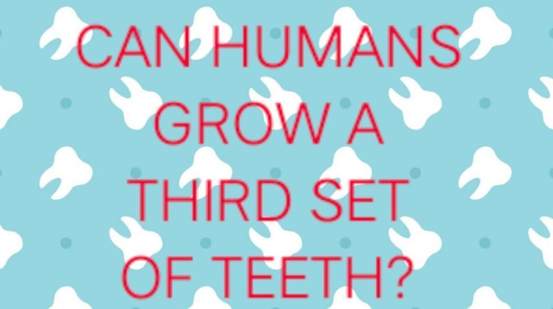 Can Humans Grow A Third Set of Teeth?