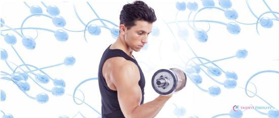 Regular Workout Improves Fertility