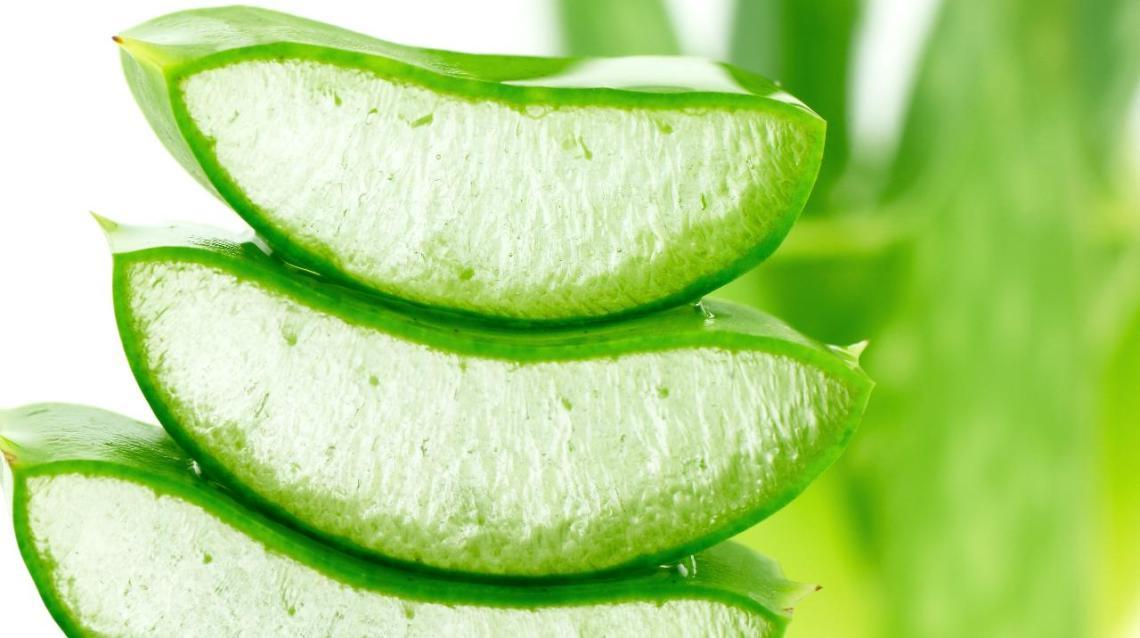 Aloe Vera Juice – a Miracle Drink for Weight Loss