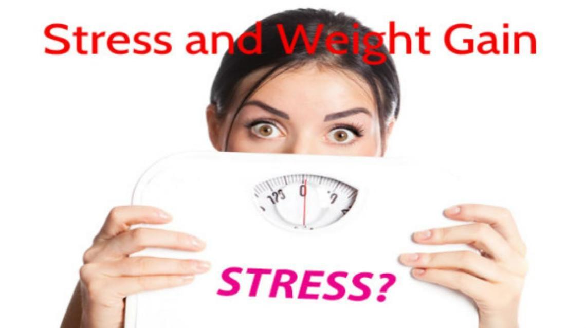 Did You Know, Stress Fattens You Up!