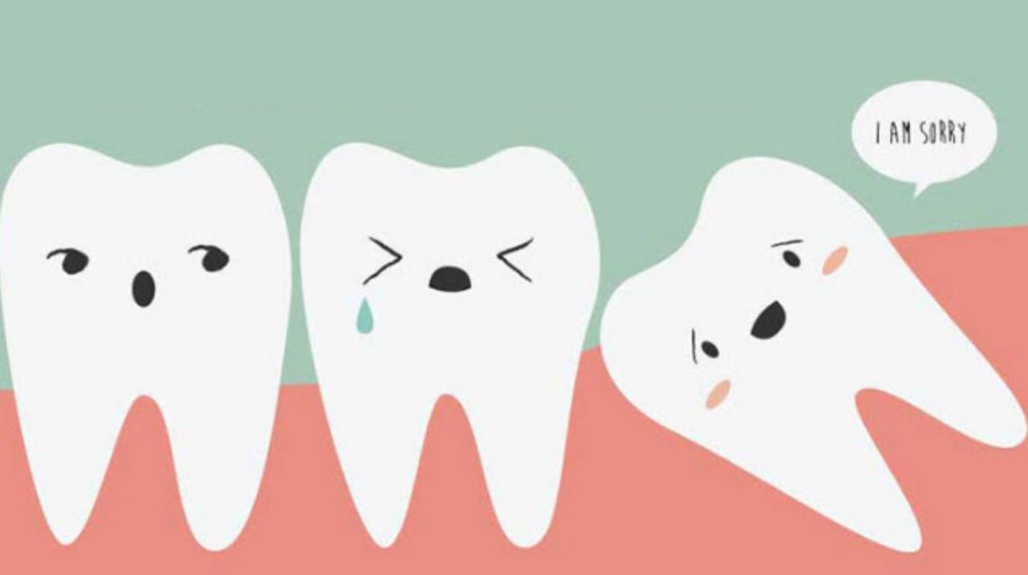 Teeth Cleaning - How Much It Cost To Clean Teeth, And