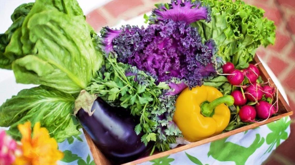 Good Bone Health With Good Nutrition