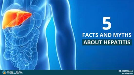 5 Facts and Myths About Hepatitis