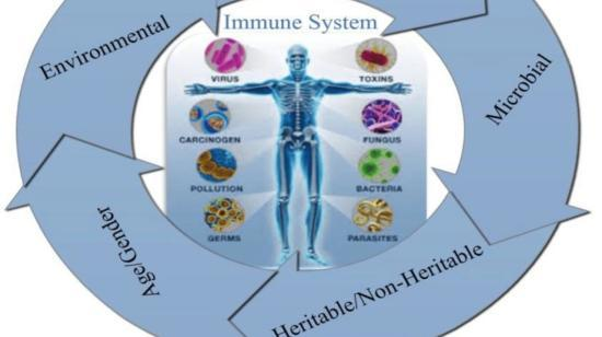 Ways to Develop Strong Immune System